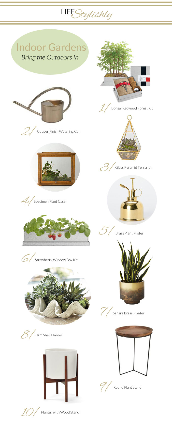 Indoor Container Garden, Planters, Plants and Terrarium Products